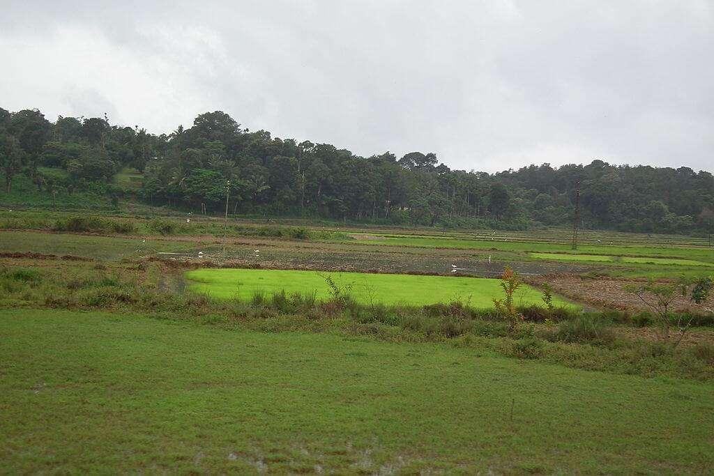 Coorg_karnataka_hillstation