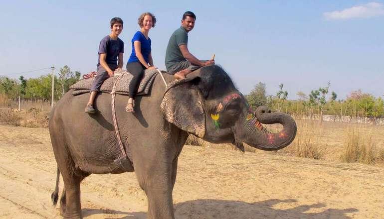 Elefantastic Jaipur
