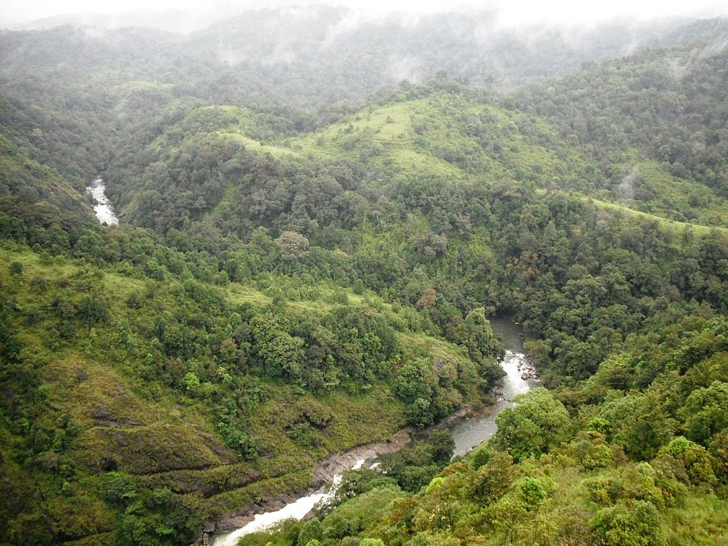 Kundhi_River_@_Silent_Valley_National_Park_-_panoramio