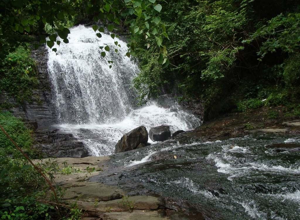 Pattathippara-Waterfalls-Thrissur